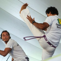 Members of Capoeira Luanda of New York City perform during the 2014 American Folk Fest on Saturday.