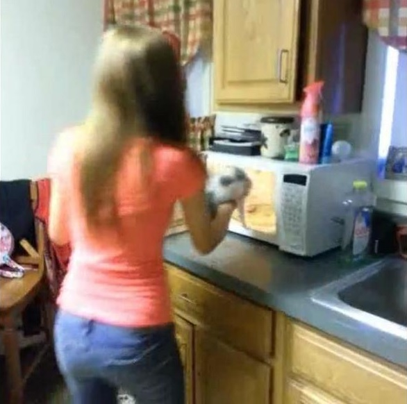 A screenshot of a video uploaded to YouTube shows a Maine teen putting a kitten in a microwave. The cat survived and the teens were sentenced to community service.
