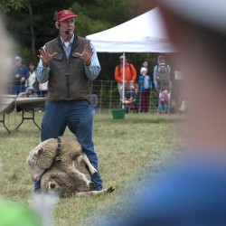 A sheepherder shows how to comfortably control a sheep during the Common Ground Fair in Unity Saturday.