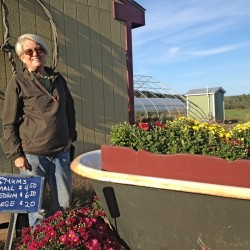 Penny Jordan is a fourth-generation farmer. She started The Farm Stand in South Portland to keep her Cape Elizabeth farm solvent for the next generation.