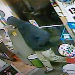 South Portland police searching for 3 suspects in armed robbery of pizza delivery man