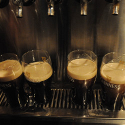 Guinness beer sits on the bar at Paddy Murphy's in Bangor in this March 2013 file photo.