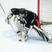 Senior goalie backstops Brewer to win over Bangor