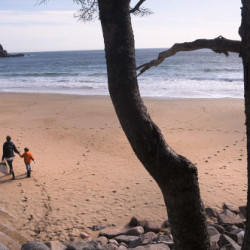 Diane Kelly-Lokocz and her son, 4-year-old Rye, arrive at Sand Beach in Acadia National Park.