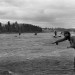 Picture from the Past: Opening day of Atlantic salmon season, 1992