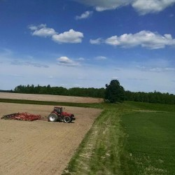 Potato and oat fields can be seen on the last day of planting on June 18 at Hemphill Farms in Presque Isle. The farm rotates fields between oats and potatoes.
