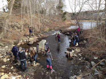 From stream flows to native plants, check out these NRCM funded kids' projects