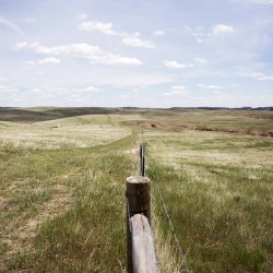 A view of reclaimed land that is being utilized for cattle grazing is seen in the left of the frame, and a view of untouched land is seen in the right of the frame during a tour of Peabody Energy's North Antelope Rochelle coal mine near Gillette, Wyoming, June 1, 2016. Reclaimed land is land that is brought back to it's pre-mining use.